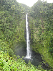Akaka Falls, on the Hilo side of the Big Island