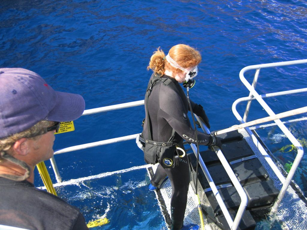 Shark cage diving at Isla Guadalupe