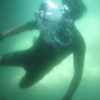 Channel Islands, Santa Cruz, Little Scorpion, Chris Lemon, snorkeling