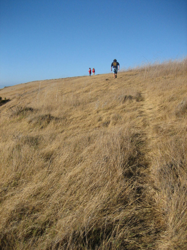 Hiking on Santa Cruz, one of California's Channel Islands